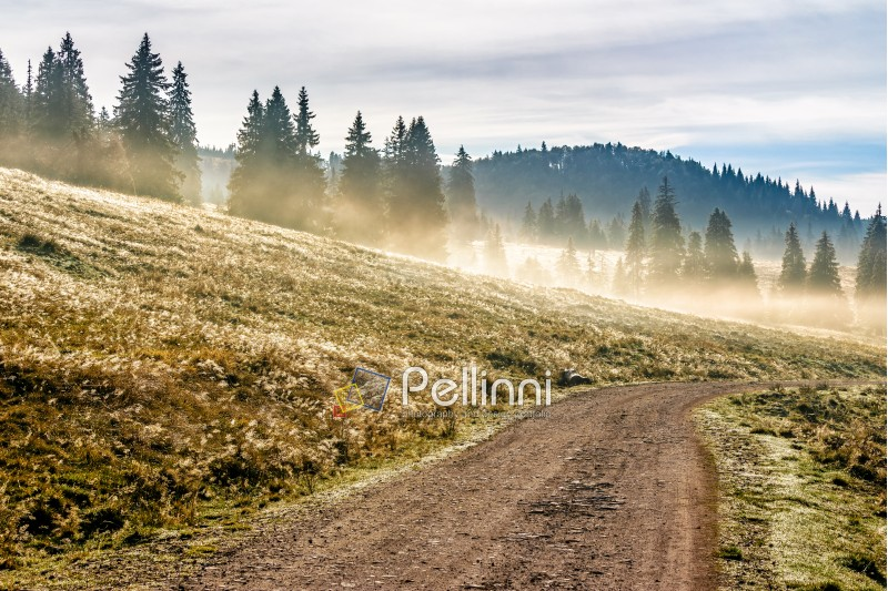 road through the valley near the foggy forest in mountains at hot sunrise