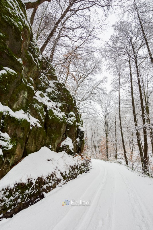 road through gorge and forest in winter. beautiful scenery with lots of snow
