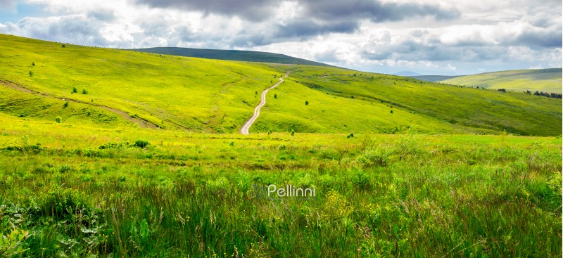 road through grassy hillside. beautiful panorama of summer landscape in mountain on a cloudy day. travel destination concept