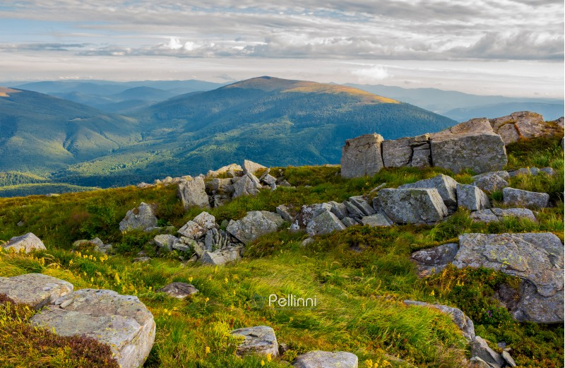 row of boulders on the hillside. lovely view from Runa mountain, Ukraine. cloudy august morning