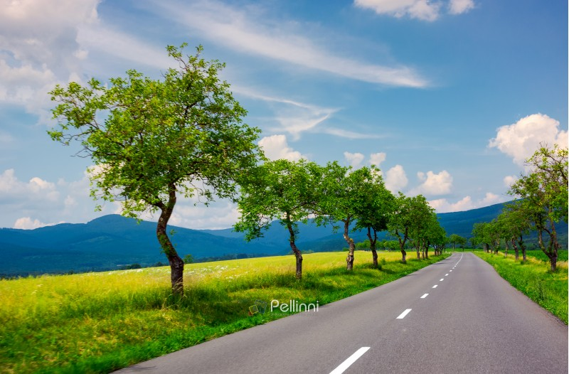 row of trees along the country road in to the distant mountains. beautiful summer landscape with stunning cloudscape. travel by car concept. realistic motion blur effect on the left side