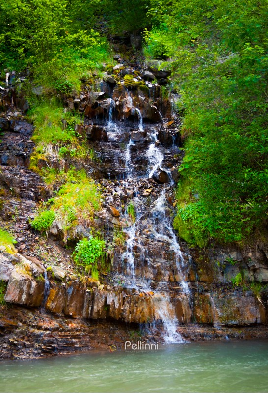 small waterfall in forest. lovely summer nature scenery. fresh and clean environment. Located in Synevyr National park, Ukraine