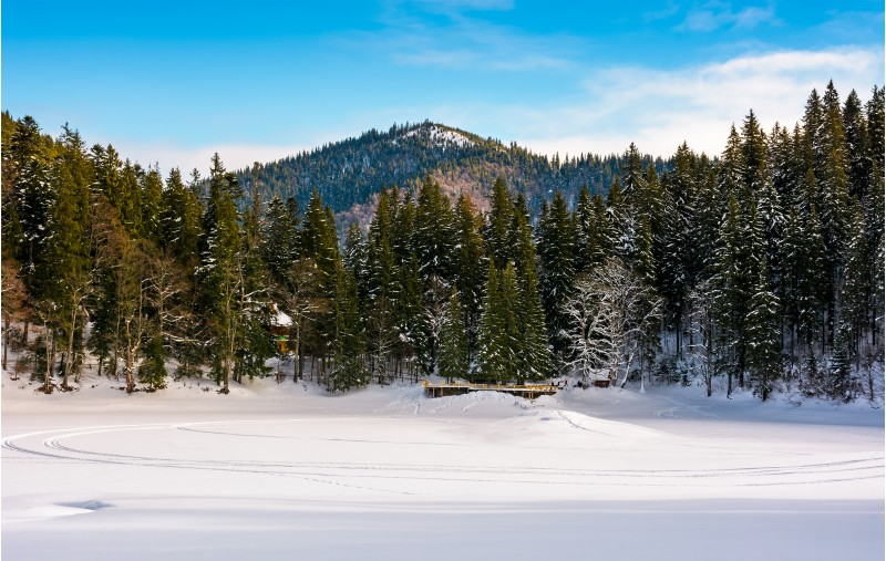 snow covered frozen Synevyr lake in winter. beautiful nature scenery of most visited locations in Carpathian mountains