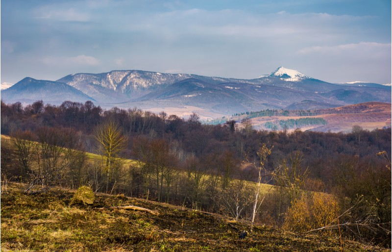 springtime landscape in Carpathian mountains. mountain ridge with Pikui snowy peak in the distance