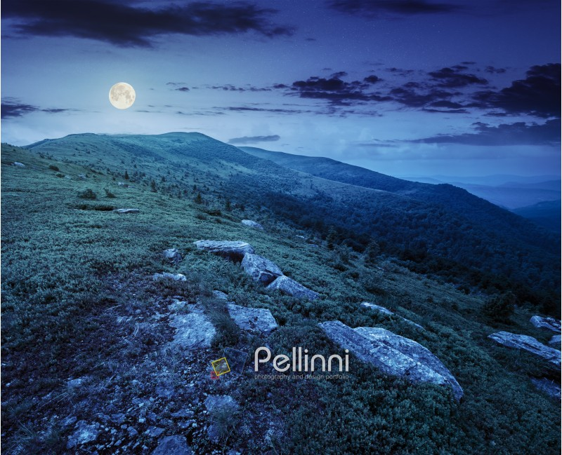 mountain landscape. valley with stones in grass on top of the hillside of mountain range at night in full moon dappled light