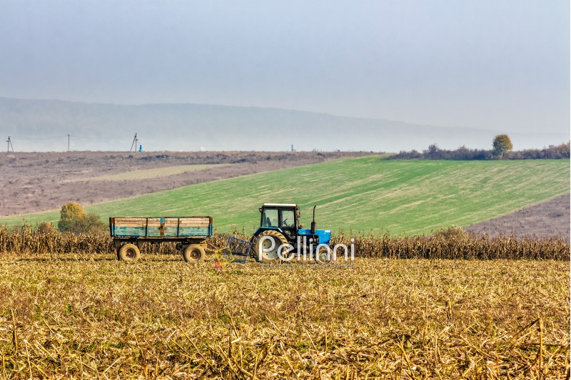 Mukachevo, Ukraine - November 6 2015: tractor in the field among the corn stalks in late fall  haze day