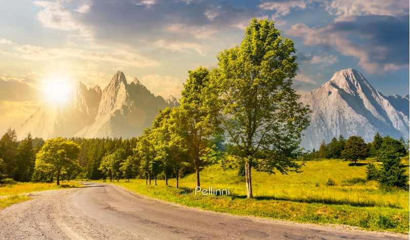 trees along the road in to the mountains at sunset. composite mountainous landscape with rocky peaks. beautiful summer nature with gorgeous sky. travel and explore unknown places concept