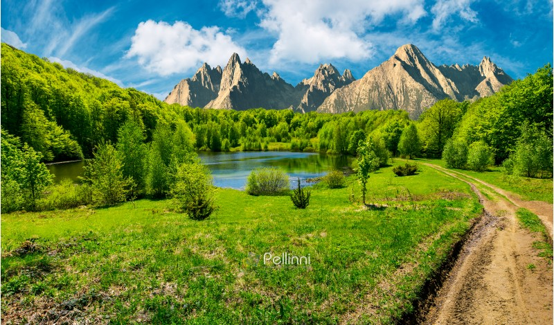 composite summer landscape. trees on the shore of a clear lake at the foot of epic high Tatra mountain ridge. rocky peaks under blue sky with clouds