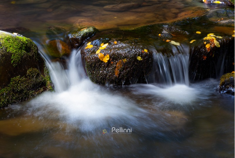 water cascade among the rocks. beautiful nature background with yellow leaves on wet stones