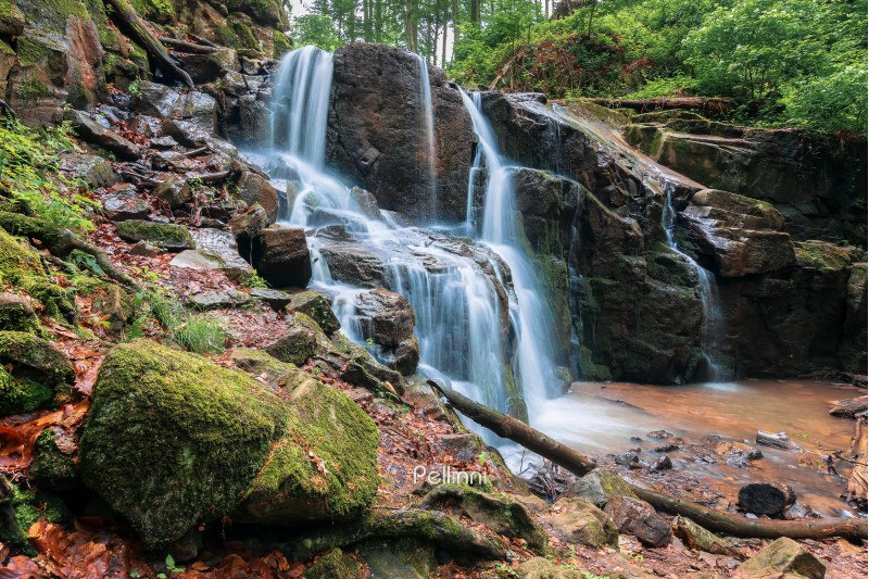 waterfall in the forest. beautiful spring scenery. water comes out of rocky cliff. mossy rocks in front of the wild rapid stream. bright and vivid nature background