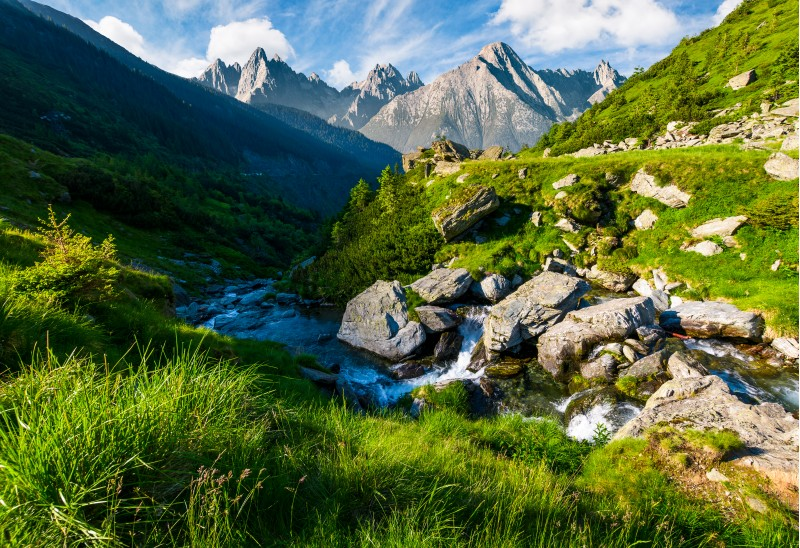 wild stream among the rocks. beautiful composite landscape with grassy hills in summer. mountain ridge with rocky peaks in the far distance under the blue sky with clouds