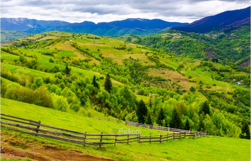 wooden fence along the grassy hillside. beautiful springtime landscape of Carpathian mountains on a cloudy day.