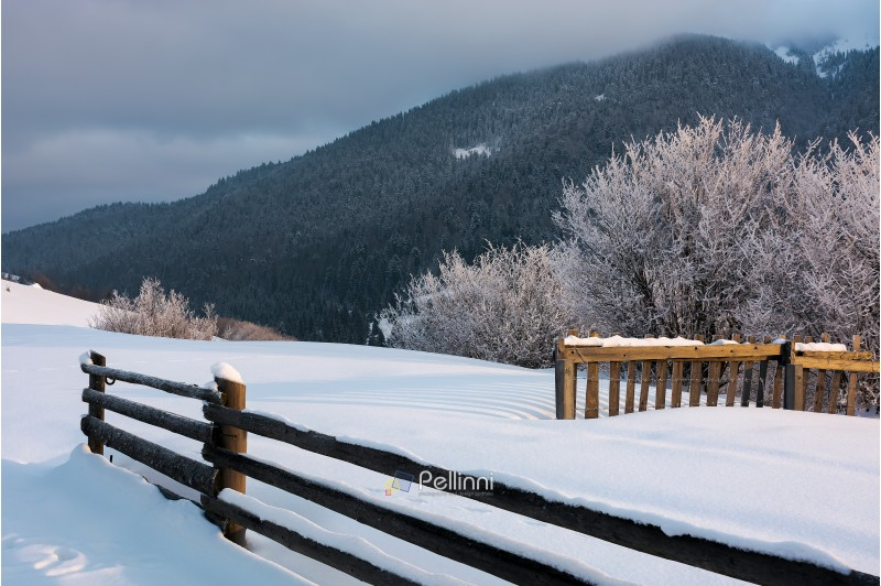 wooden fence on snowy hill in morning light. trees in glittering hoarfrost at the edge of a slope. forested mountain ridge in the distance touches low hanging clouds. magical moments of winter season