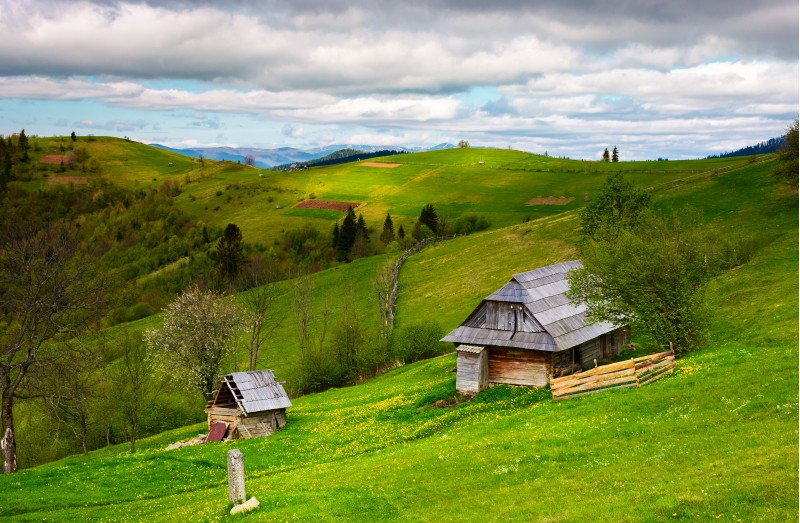 woodshed on a grassy hillside on a cloudy day. village outskirts with rural fields in mountainous area on a cloudy springtime day
