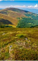 Carpathian Mountains with its peaks, hills, meadows and forests under the blue sky with clouds in late summer day