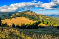 landscape; mountain; valley; forest; autumn; Apuseni; Carpathian; conifer; Romania; nature; hill; hillside; slope; meadow; evening; golden hour; sky; cloud; tree; view; national; background; grass; beautiful; top; weather; travel; dramatic; tourism; europe; hiking; scene; wild; wood; outdoor; park; fir; fresh; colorful; warm; majestic; good; calm; range; fall; ridge; high
