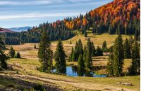 Pond in Carpathian mountains in autumn at sunrise. Mixed forest on hillsides of Apuseni National park in Romania. Bihor Mountain ridge in the distance