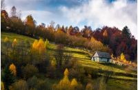abandoned house in autumn forest on hillside. lovely countryside scenery on fine weather autumn day