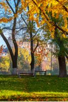 Uzhgorod, Ukraine - Nov 10, 2012: autumn park on Pravoslavna naberezhna in autumn foliage.  ancient building of University on the hill in the distance. beautiful sunny weather