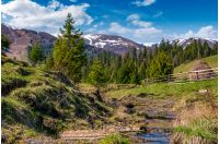 beautiful mountainous countryside in springtime. trees and wooden fence on hillside near the small brook. spruce forest at the foot of the mountain ridge with snowy tops