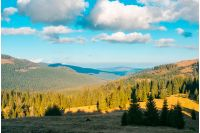 beautiful mountainous landscape. spruce forest on hill sides. wonderful weather with fluffy clouds on the blue sky. creative toning