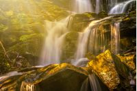incredibly beautiful and clean little waterfall with several cascades over large stones in the forest comes out of a huge rock covered with moss in rays of morning sun