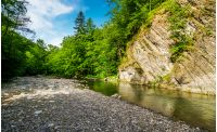 calm forest river under rocky cliff. beautiful summer nature background