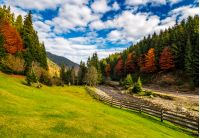 camping place meadow near forest in mountains. scene with wooden fence near calm river and few red foliage trees among spruce forest on hillside