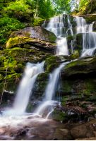 cold waters of mighty waterfall Shypot. beautiful nature summer scenery among forest. one of the most visited locations in Carpathian mountains of Ukraine
