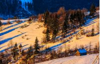 woodshed on snowy rural fields near forest. colorful sunrise in Carpathian mountains.