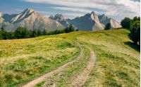composite landscape with Hight Tatra mountains. country road in to the distant forest along the grassy meadow. lovely summer scenery