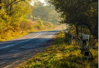 country road with metal fence through forest in morning haze. lovely early autumn atmosphere