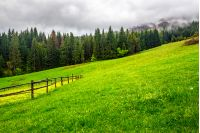 autumn landscape. fence on the hillside meadow near forest in mountain.