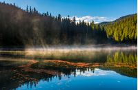 fog rise over forest lake in mountains at sunrise. absolutely stunning autumnal nature scenery with morning glowing mist in golden sun rays and reddish foliage sliding on water ripples
