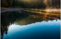 fog rise near the pier of forest lake in mountains at sunrise. absolutely stunning autumnal nature scenery with morning glowing mist in golden sun rays and reddish foliage sliding on water ripples