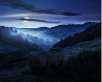 idyllic summer landscape. cold morning fog on hillside in mountainous rural area before sunrise at night in full moon light