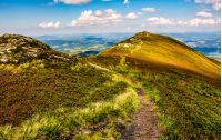 winding footpath through meadows with rocks on the hillside of Carpathian mountain range. Beautiful summer landscape