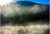 forest lake with smoke on the water. foggy sunrise with sun beams. dramatic autumnal background