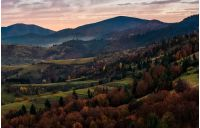 forest on hills in mountainous countryside at dawn. lovely landscape in autumn