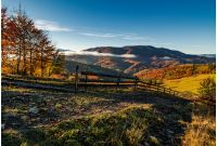 gorgeous foggy morning in mountainous countryside. beautiful landscape with wooden fence and trees with yellow foliage near the rural fields on hillsides in late autumn