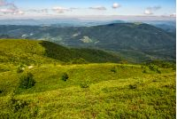 grassy hillside of Carpathian mountain range. beautiful mountain scenery in summer time