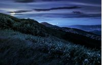 grassy meadow on a hillside at midnight. mountain landscape at night in full moon light