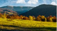 grassy meadow on hillside in autumn. beautiful mountainous landscape on a bright day