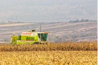 Mukachevo, Ukraine - November 6 2015: harvester in the field removes the corn stalks in late fall haze day