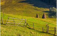 hay stacks behind the fence on rural field. lovely Carpathian countryside landscape in early autumn morning
