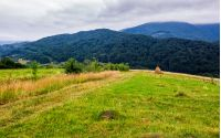 haystack on rural field in mountains. lovely scenery of Carpathian countryside