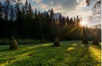 haystacks on the grassy forest meadow in High Tatra mountains. Beautiful rural scenery composite in Slovakia at sunrise