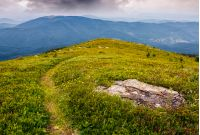 high mountain idyllic landscape. path through grassy meadow with boulder on hillside. beautiful nature.