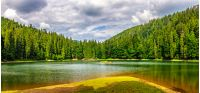 landscape near the lake among conifer forest in mountains in the early summer morning