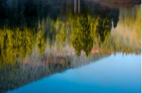 beautiful abstract nature background of lake surface reflecting spruce forest on hillside textures
